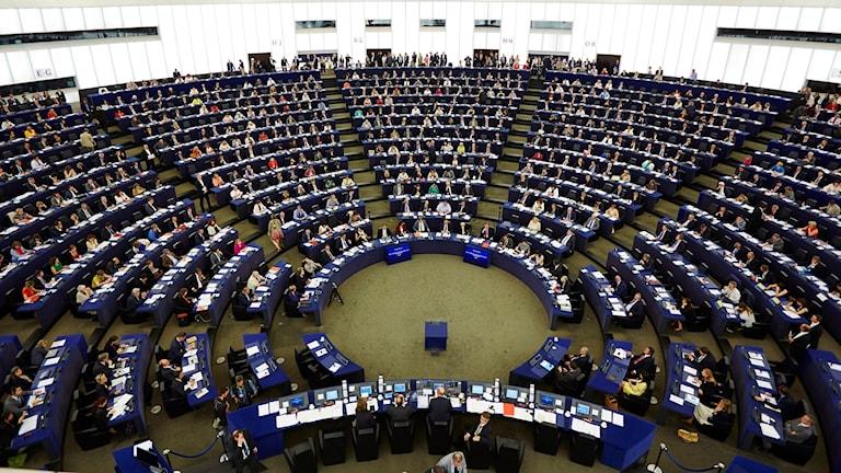 قاعة البرلمان الأوروبي.