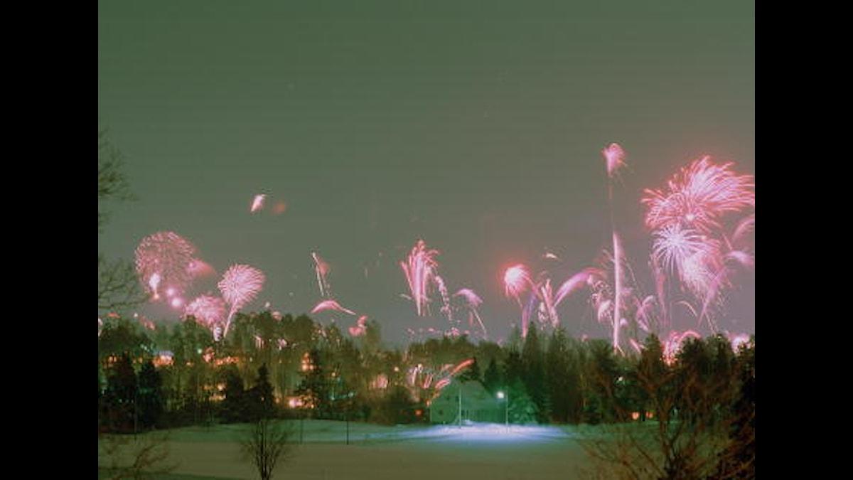 Kuva/Foto: SVT NOF
