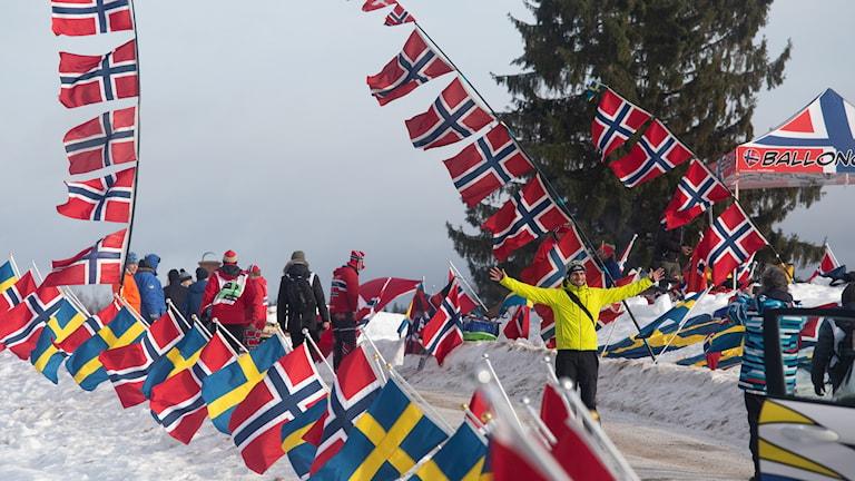 Publik på en rallysträcka. Foto: Isak Olsson/Sveriges Radio.