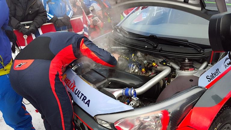 Hayden Paddon kollar i motorrummet. Foto: Christian Fryklund/Sveriges Radio.