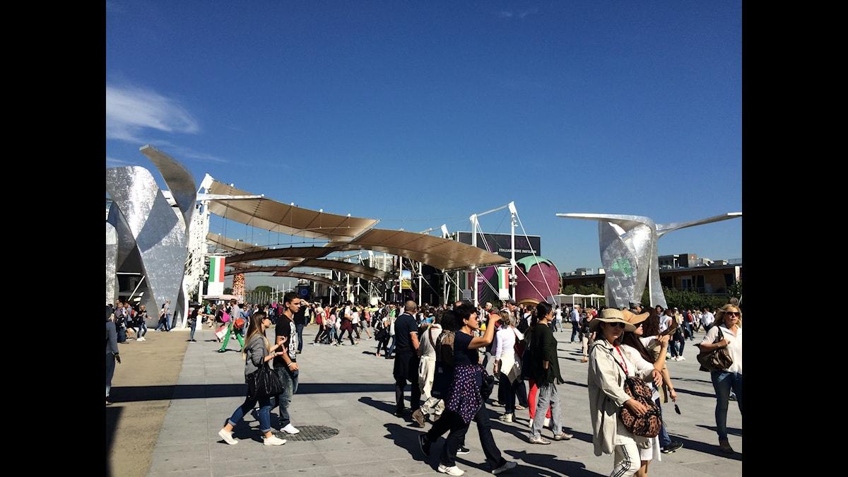 Milanon maailmannäyttely. Foto: Irma-Liisa Pyökkimies SR Sisuradio