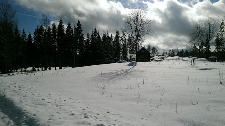 Platsen där huset låg.