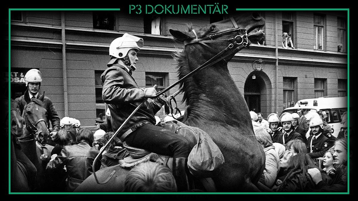 Polisthäst - Slaget om kvarteret Mullvaden