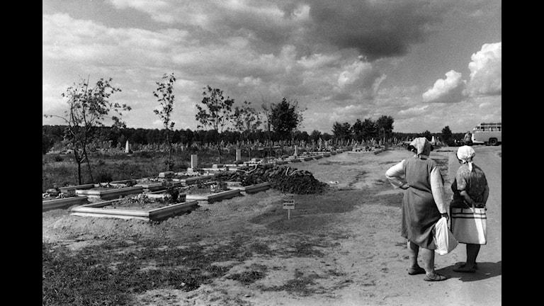 På en kyrkogård i den lilla byn Mition utanför Moskva vilar nu de döda från Tjernobyl sida vid sida. Olyckan på kärnkraftverket i Tjernobyl skedde den 26 april 1986. Foto Bobo Schentz / SCANPIX