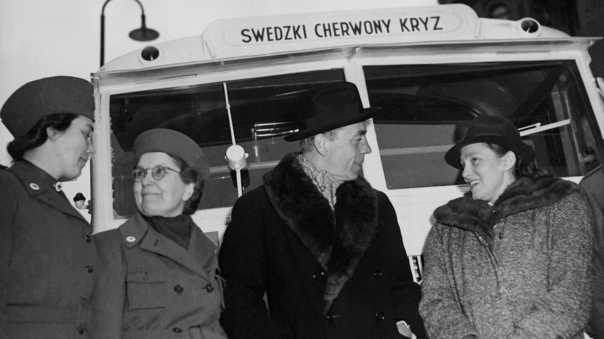 Folke Bernadotte buss