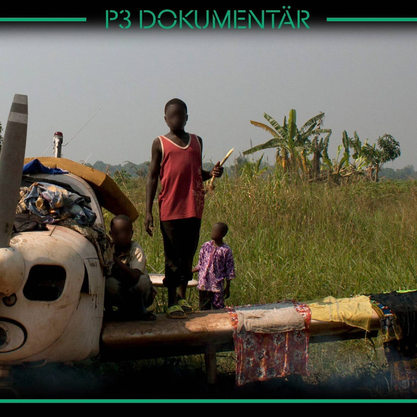 FN och pedofilskandalen