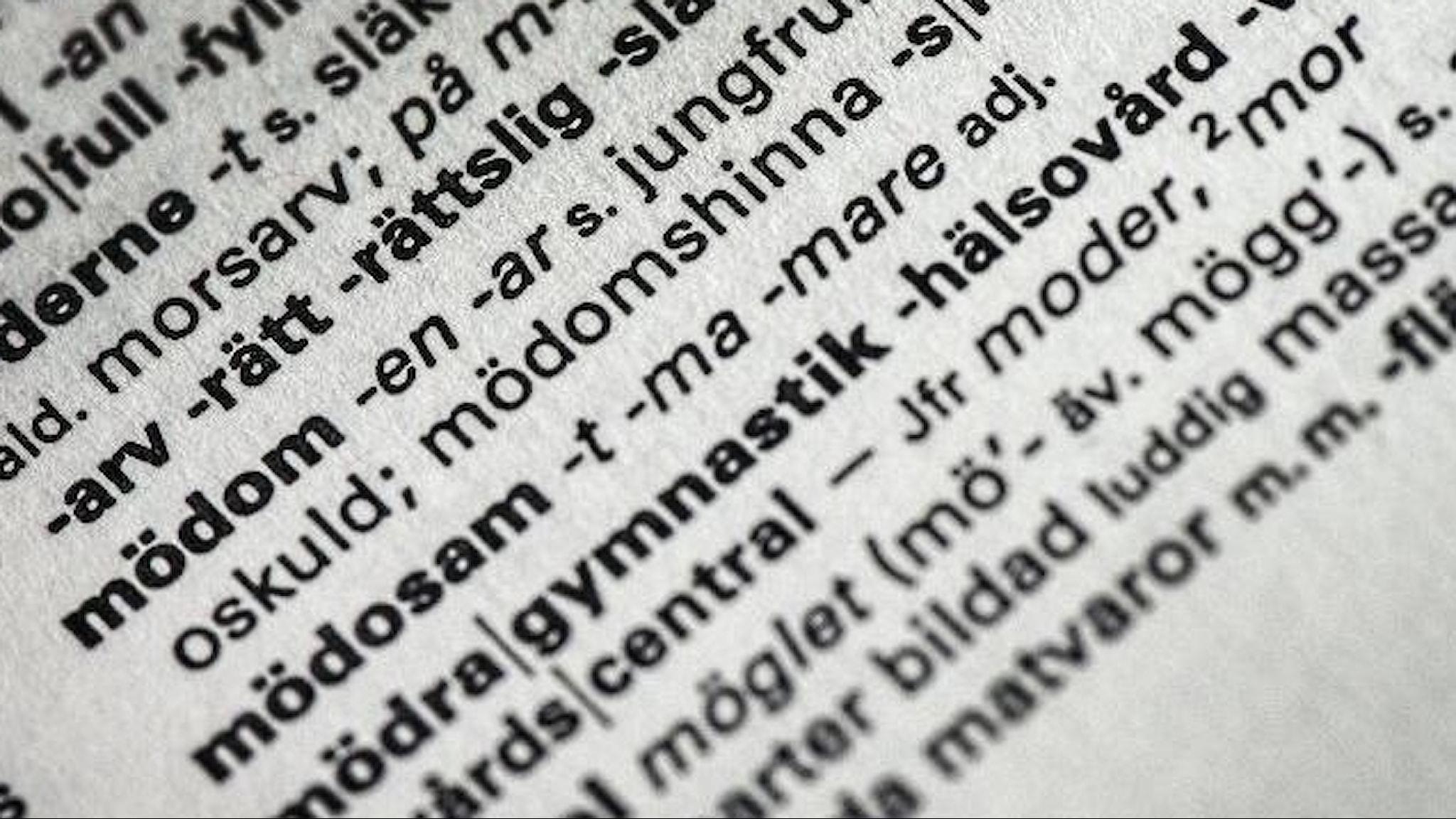 """Ordet """"mödomshinna"""" uppslaget i ordboken."""