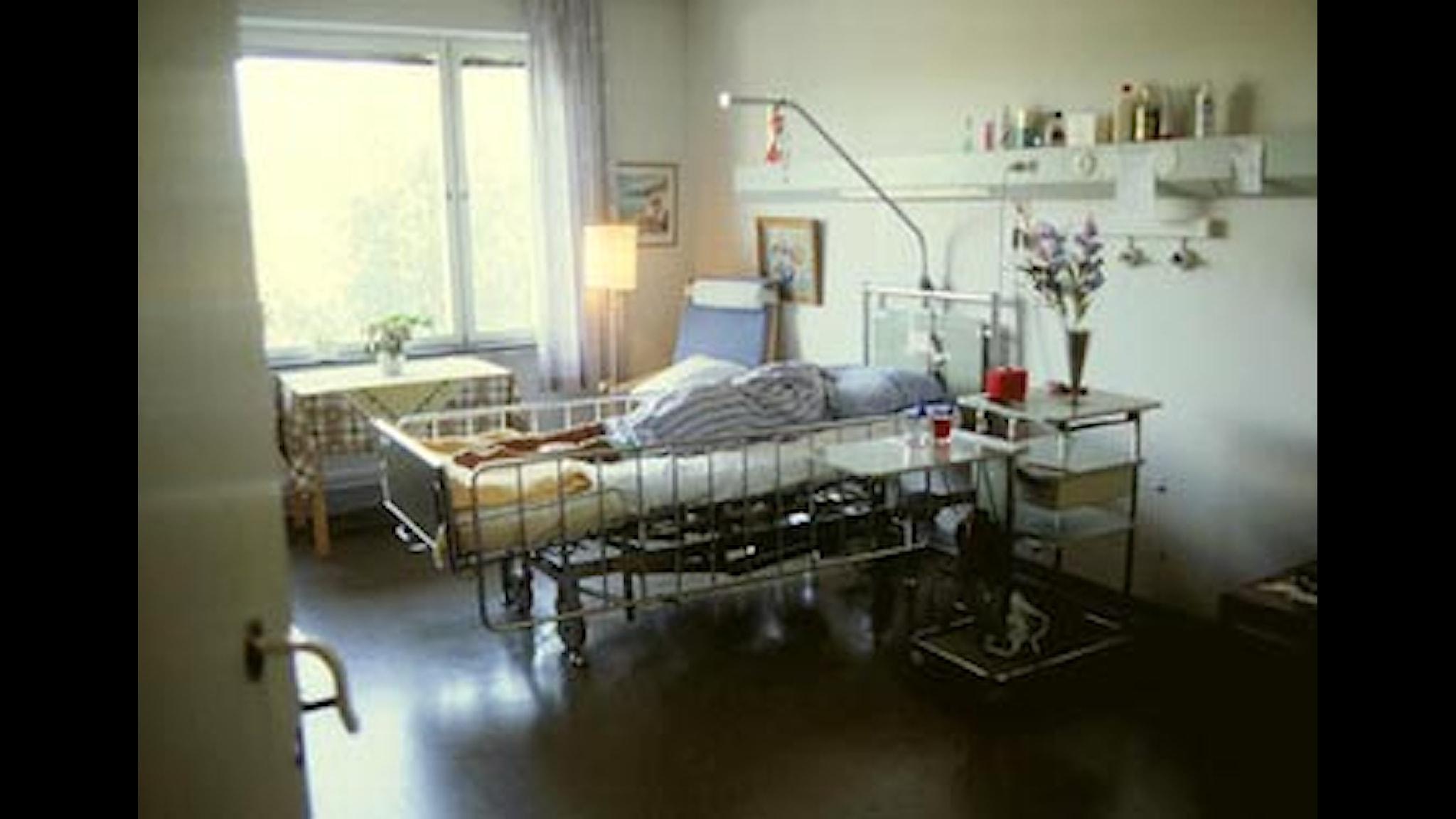 Foto: SVT Bild