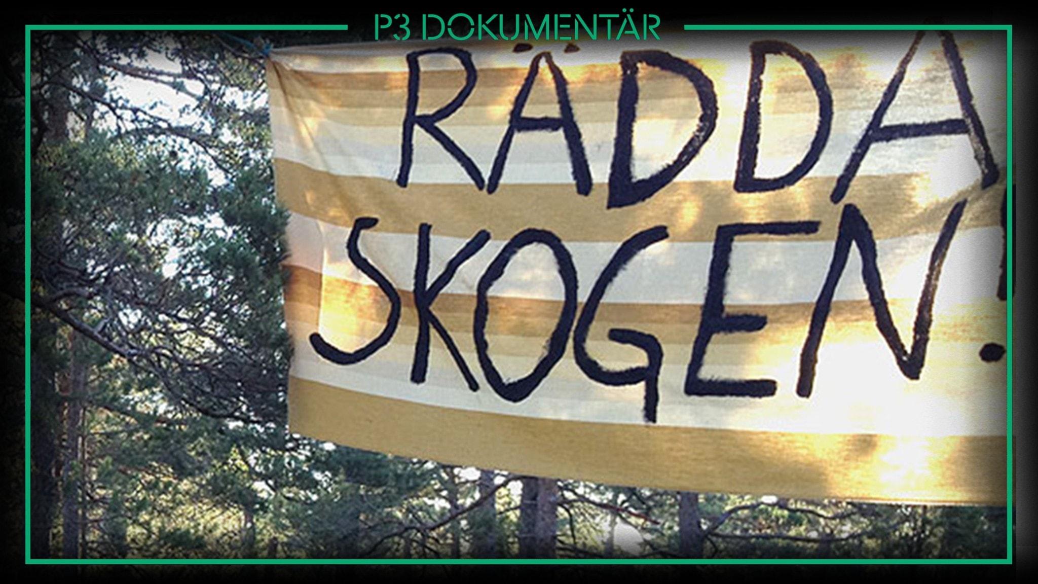 P3 Dokumentär Striden om Ojnreskogen
