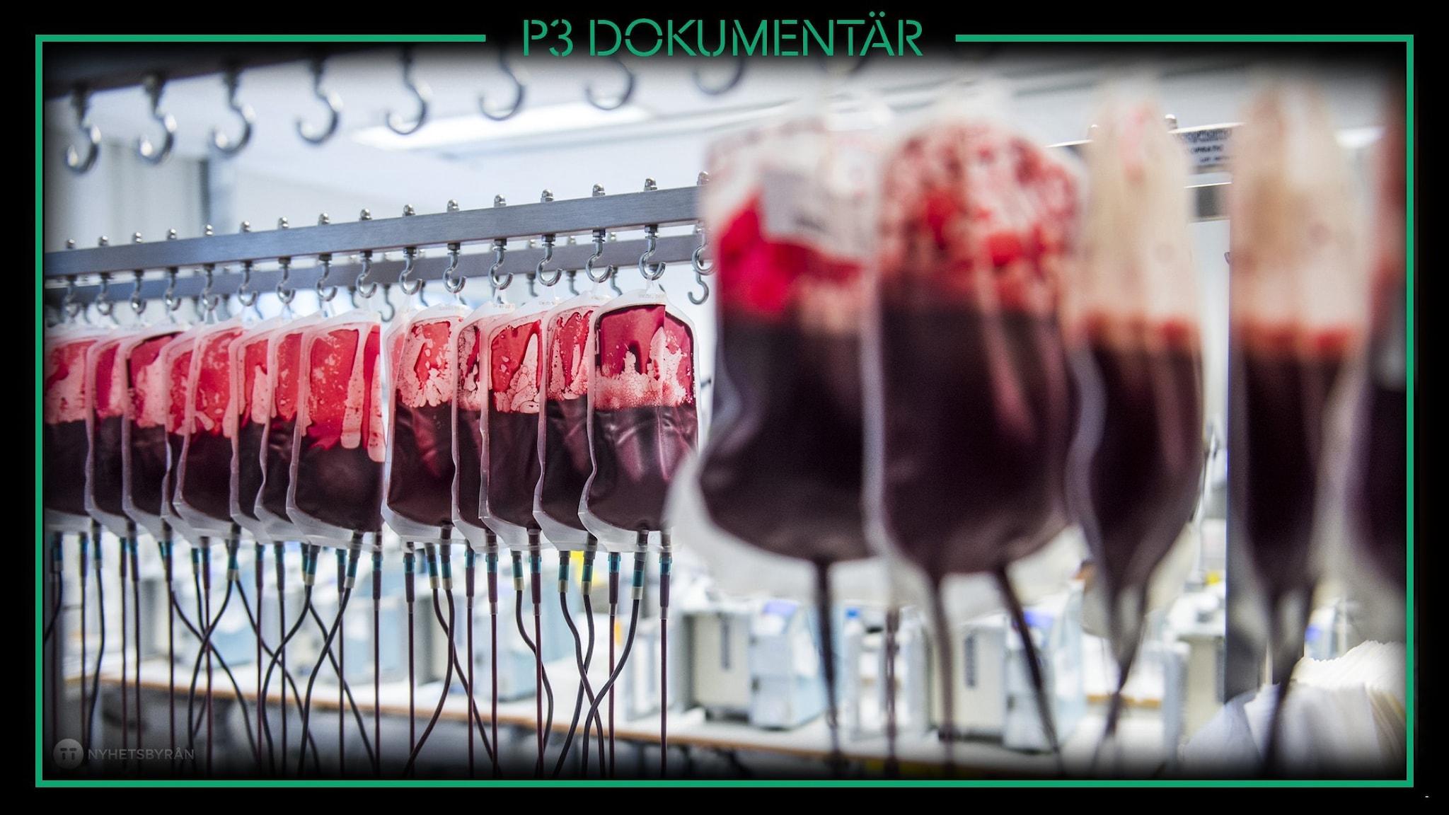 Foto av blodgivarpåsar