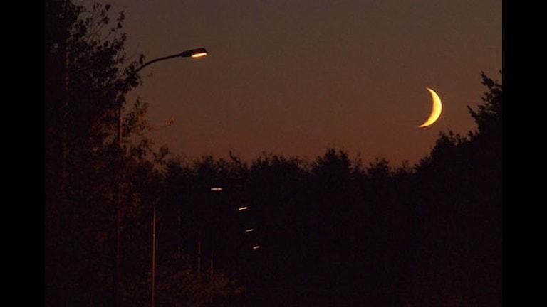 Nymåne och gatlyktor. Foto: Sigfrid Lundberg, CC (by, sa)