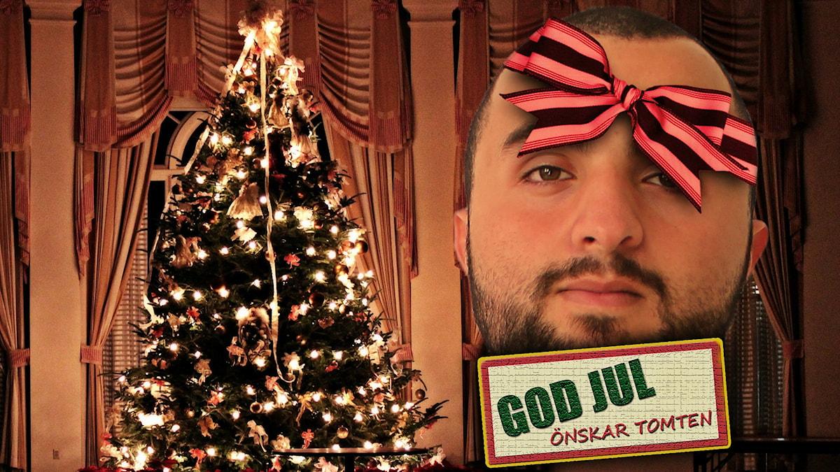 Har man tur hittar man Hamza under granen på julafton. Foto: Flickr/Elisabeth Ashley Jerman/Lauren/CC BY-NC 2.0/SR
