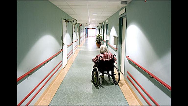 Kvinna i rullstol på äldreboende. Foto: Pontus Lundahl/Scanpix.