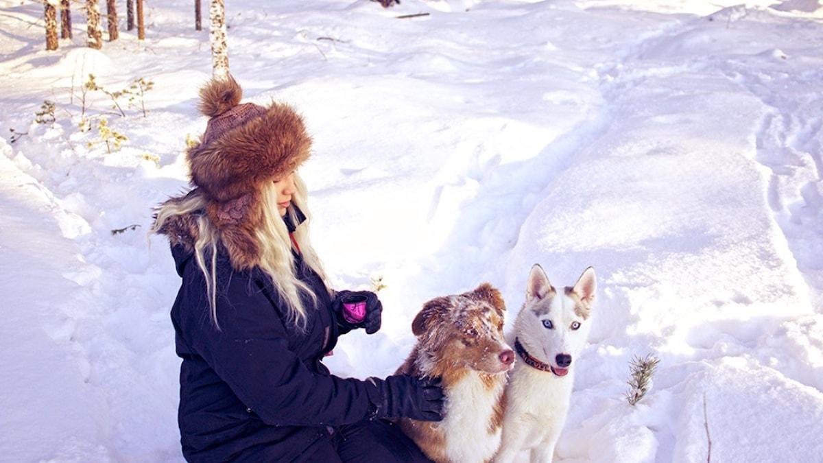Sanne Brännström ja hänen koirat Iwa ja Izla