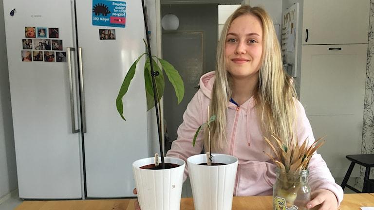 Emilia Hannu med sina exotiska växter på bordet.