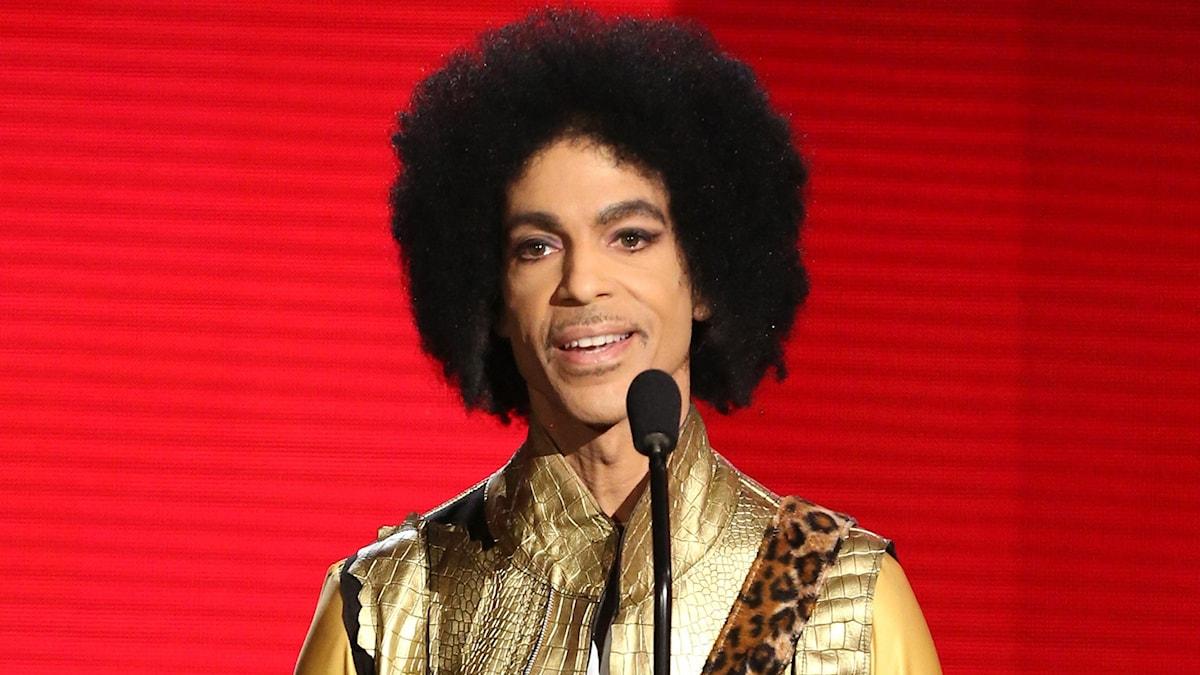 Bild på Prince.