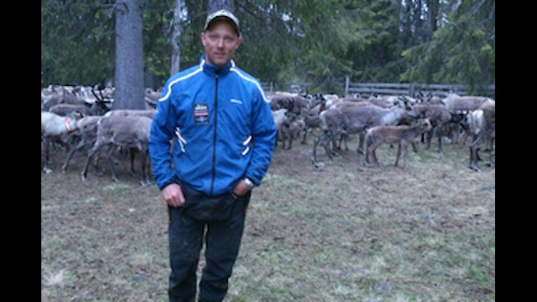 renskötaren martin Lundberg