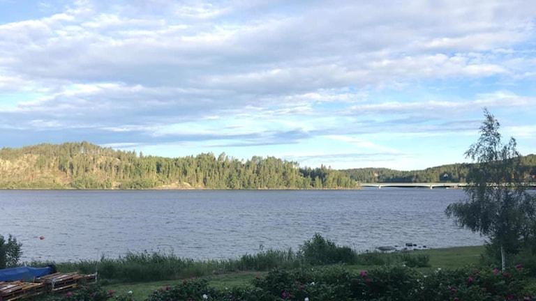 Soligt, blåsigt och +8 på Svartnoranäset, Höga kusten