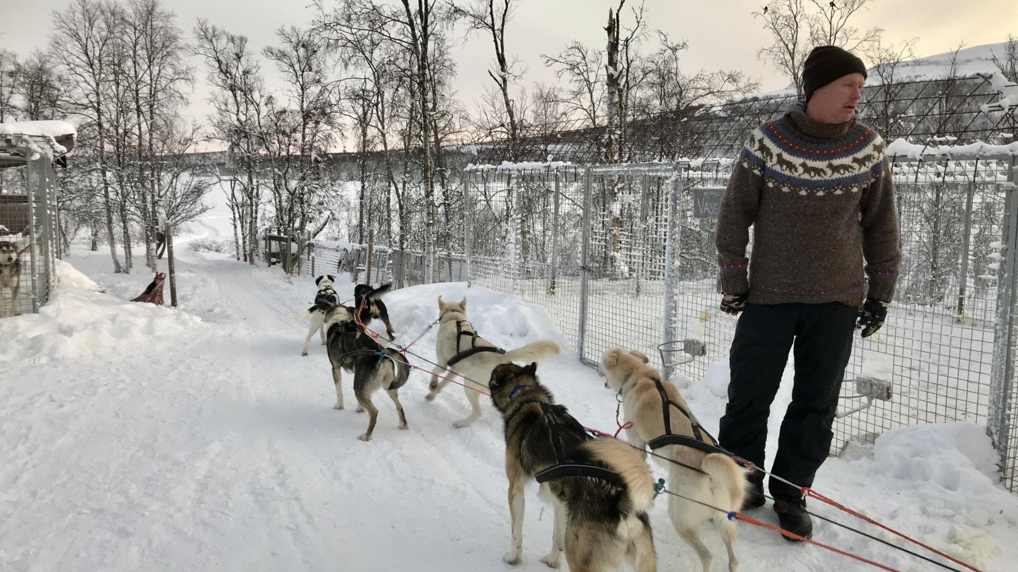 Hjältehundarna som räddade en stad i Alaska