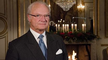 Carl XVI Gustaf. Foto: Sven-Åke Visén/SVT.