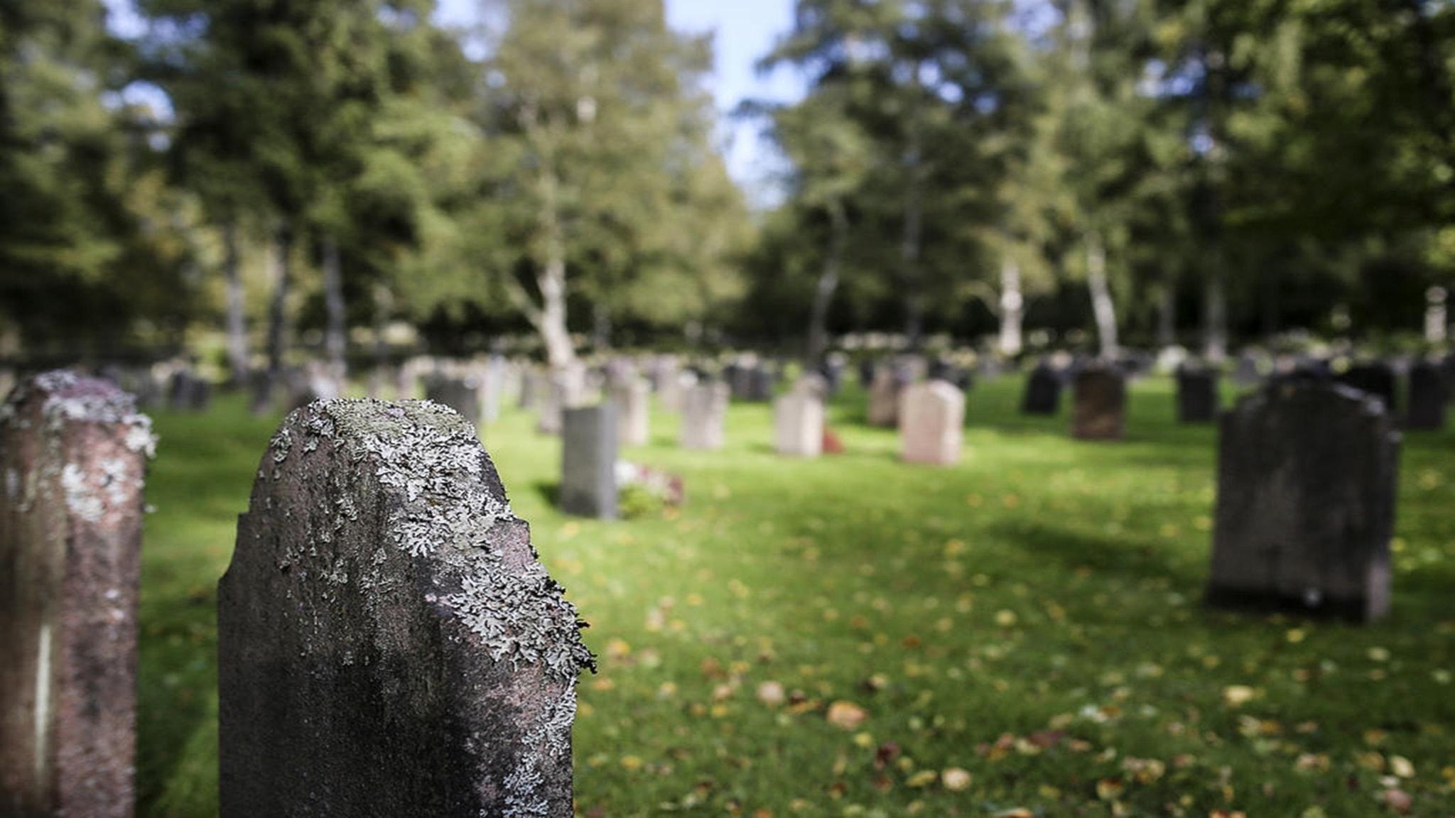 Plånboken special om Klarnas betalningsmetoder, självhushållning och digitala kyrkogårdar.