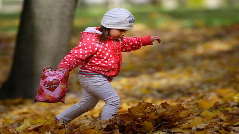 Vilken barnförsäkring är bäst?