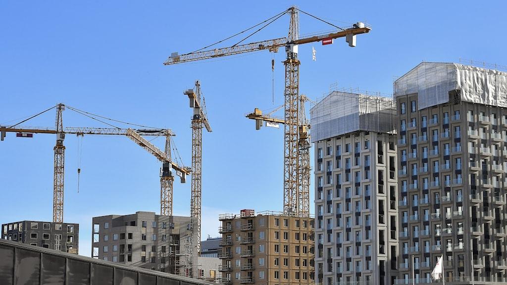 Bild på byggkrnar och nya bostadshus