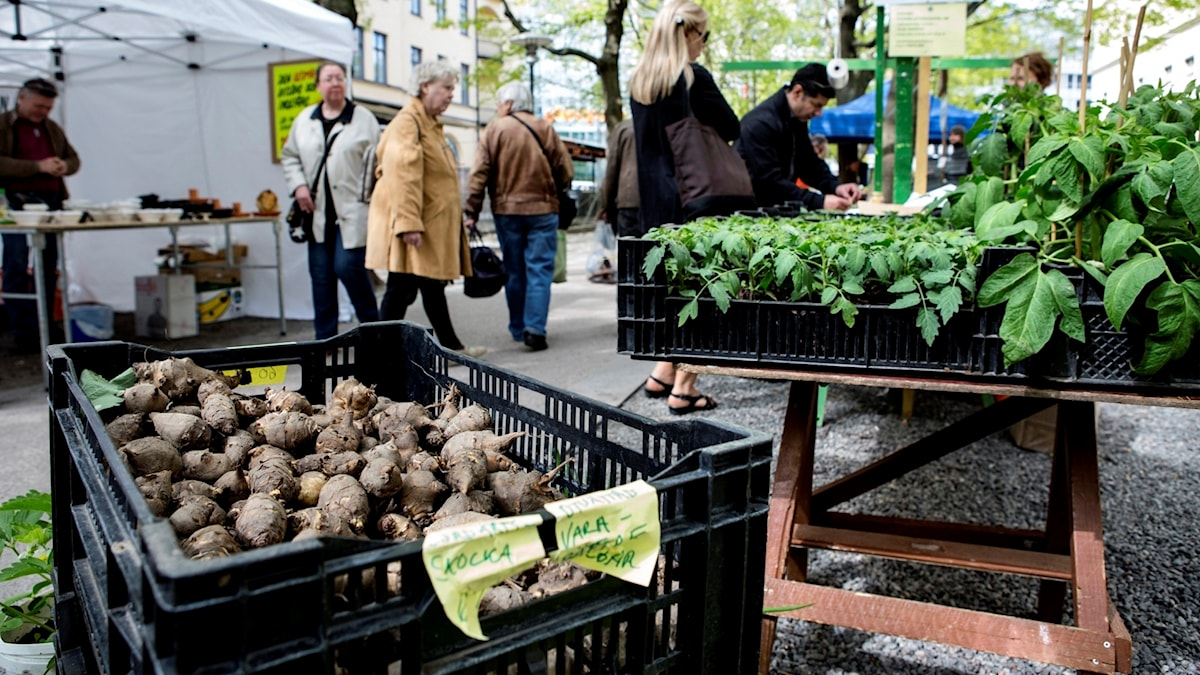 Grönsaker på marknad.
