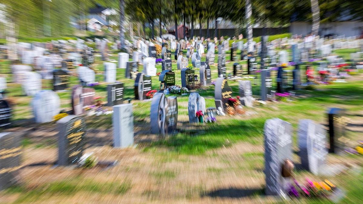 Gravstenar på kyrkogård