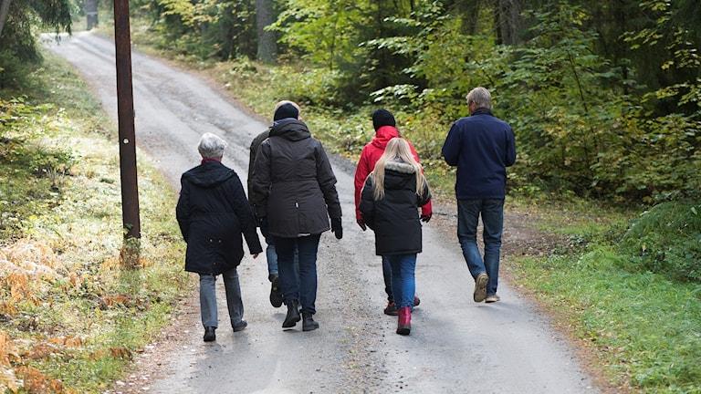 Tre generationer på skogspromenad.