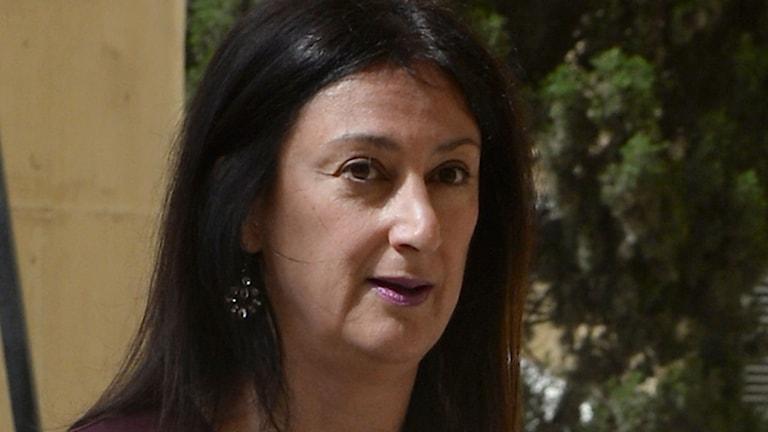 Daphne Caruana Galicia