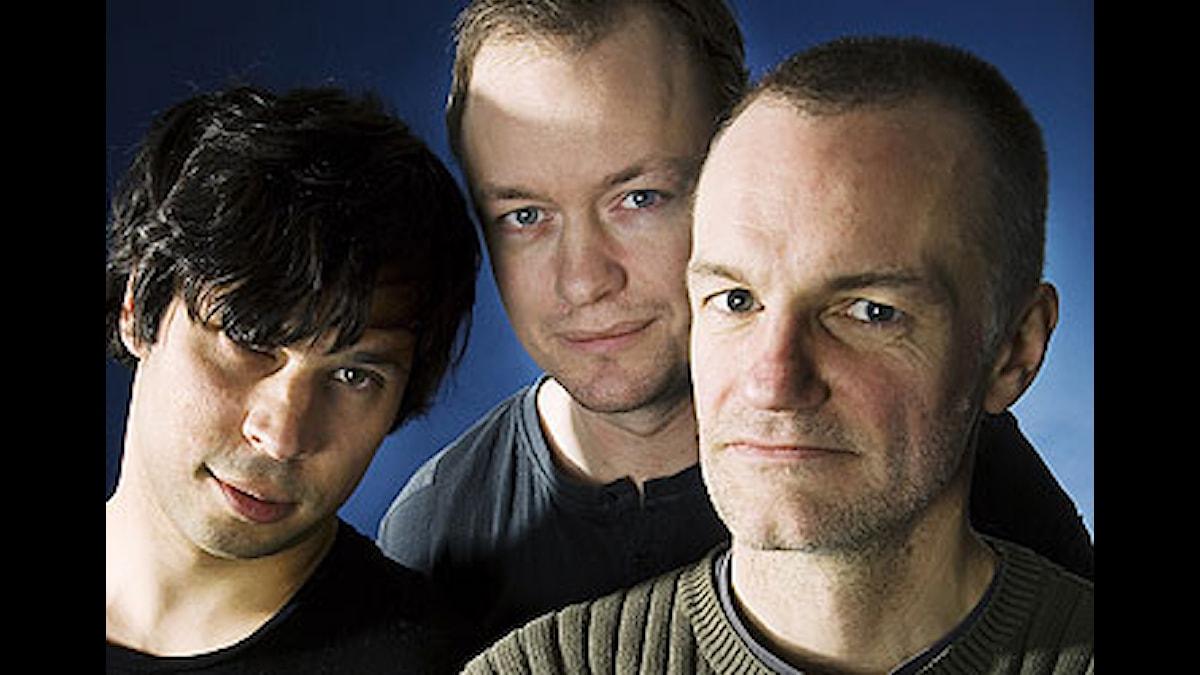 fr.v Martin Wicklin, Petter Ljunggren och Lars Truedson. Foto: Stina Gullander/SR