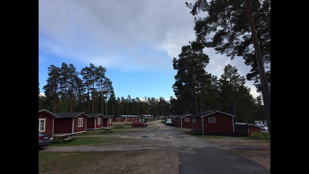 Det här är platsen har många medier skrivit om i veckan, men få har varit där. Foto: Jonna Westin/Sveriges Radio