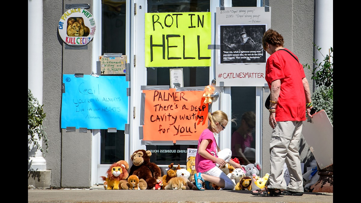 """""""Ruttna i helvetet"""" uppmanar demonstranter tandläkaren som jagat lejon."""