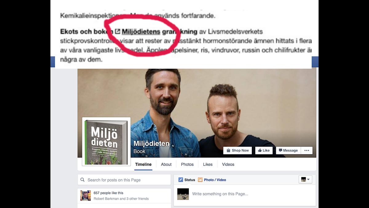 Reklam i Ekot