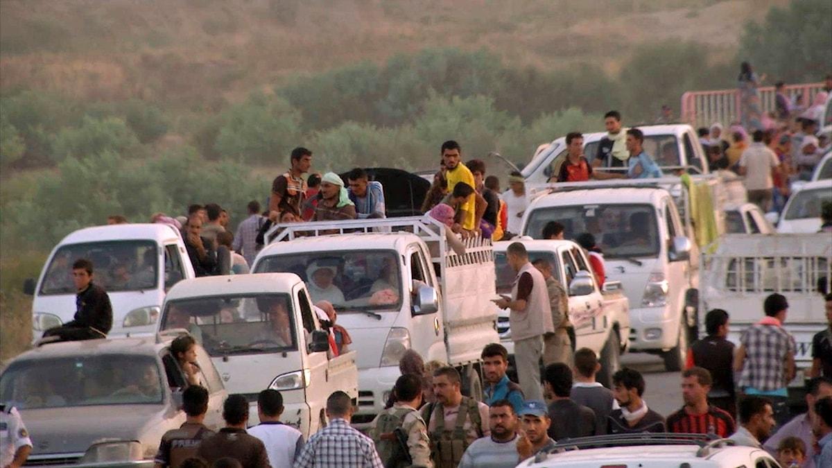 Tredje augusti 2014. Yazidier flyr från terrorsekten IS.