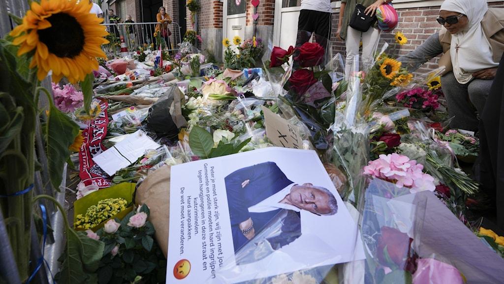 Netherlands Journalist Shot