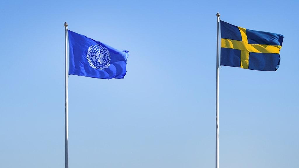 FN-flaggan vajar bredvid den svenska flaggan.