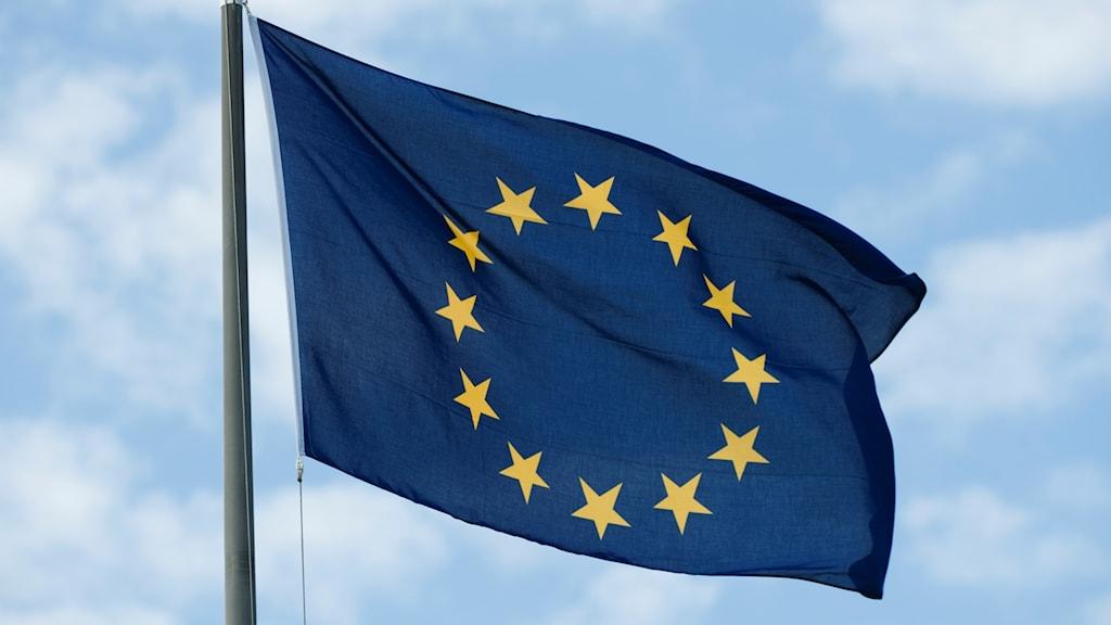 Eu-flaggan, blå bakgrund med gula stjärnor i en ring.