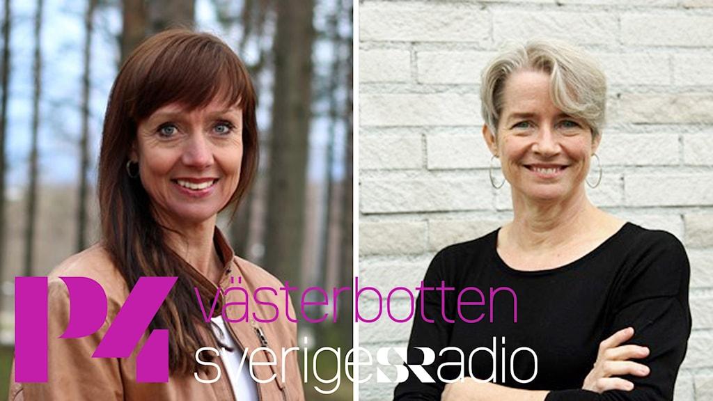 P4 Västerbotten - Förmiddag i P4 Västerbotten