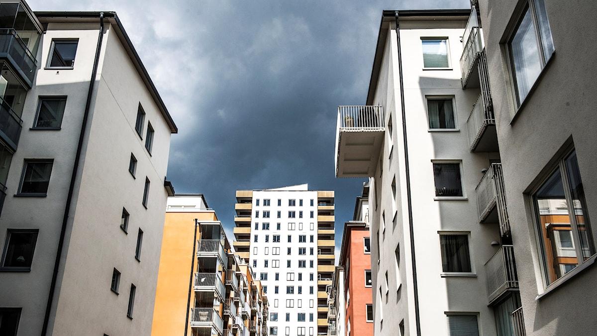 Flerfamiljshus i Hornsberg i Stockholm. Foto: Tomas Oneborg/TT
