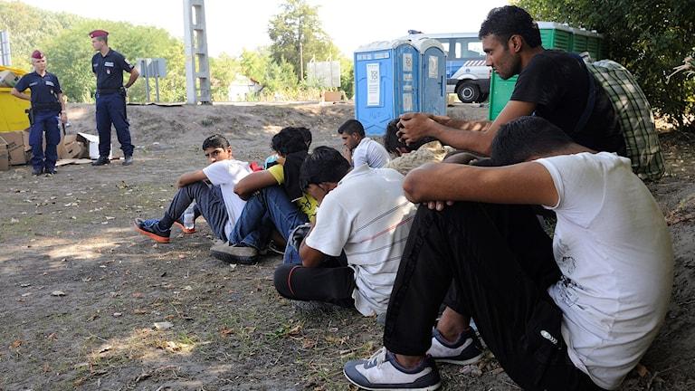 Människor på flykt bevakas av ungerska poliser vid den stängda gränsen mellan Serbien och Ungern i Ásotthalom 184 km sydost om Budapest, Ungern. Foto: Zoltan Gergely Kelemen/TT