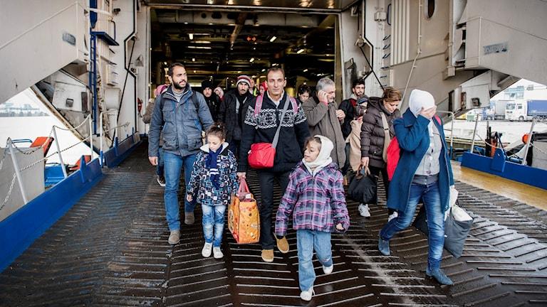 Flyktingar anländer till Trelleborg med färjan från Rostock. Foto: Marcus Ericsson / TT