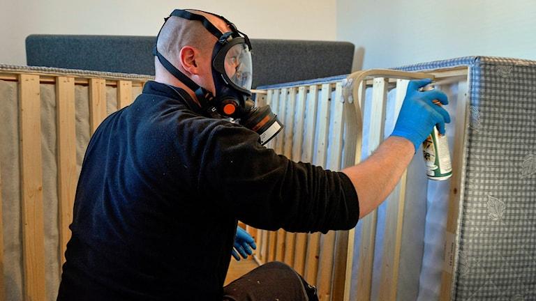 Specialtekniker Jonny Ström arbetar med en sanering av en lägenhet utanför Stockholm. Foto: Anders Wiklund /TT.