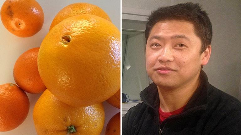 Kombobild med citrusfrukter och Thawal Silwer