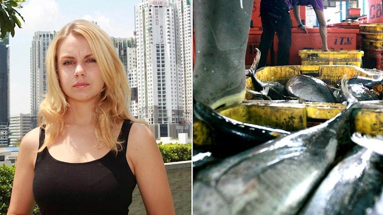 Josephine Freje i Bangkok och fiskare i Indonesien.