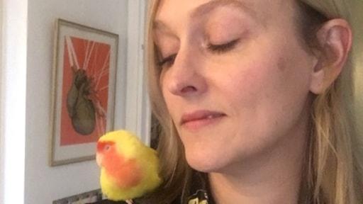 Jessica Andersson Jonson och den gulröda fågeln.