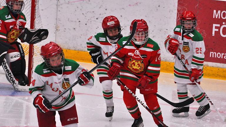 Hockey. (Mora IK). Foto: P4 Dalarna, 2013