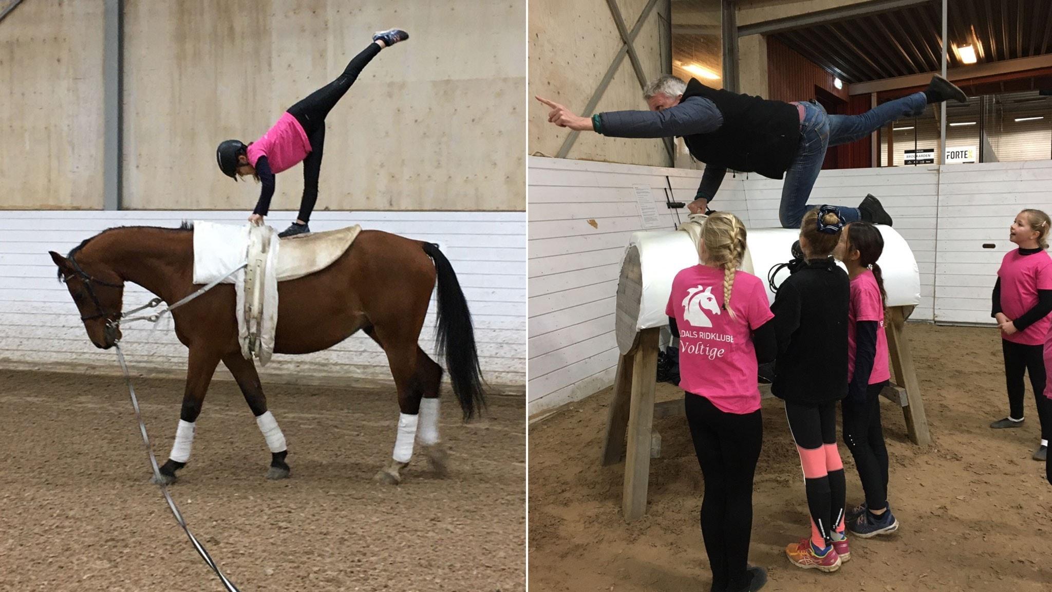 Voltige – gymnastik på hästens rygg