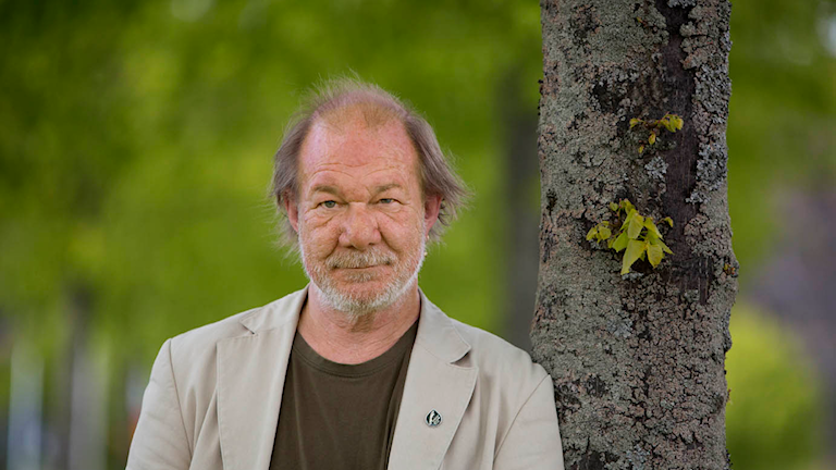 Patrik Paulsson. Foto: Henrik Brunnsgård